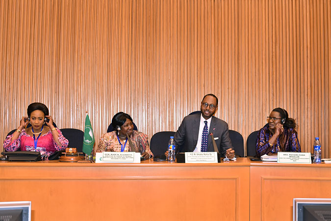 High-Level Panel on Women's Economic Empowerment calls for ending gender discrimination to ensure the full potential of Africa's youth at African Union Summit